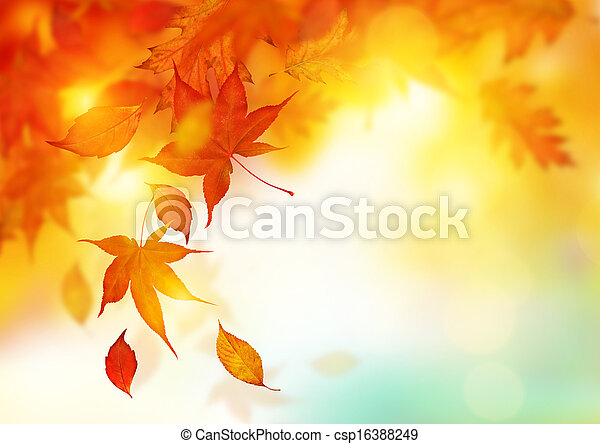 Autumn Falling Leaves - csp16388249