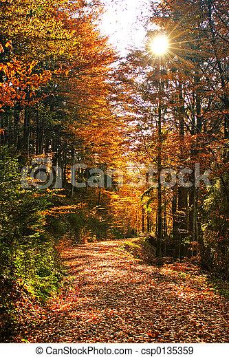 Autumns - csp0135359