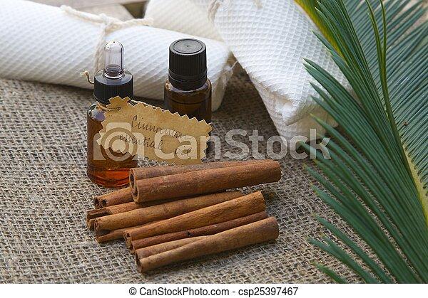 Cinnamon essential oil - csp25397467