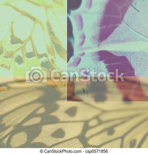 Collage - csp0571856