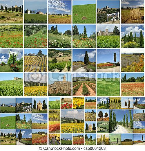 collage - csp8064203