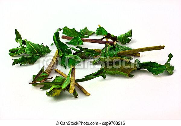Dried herbs - csp9703216