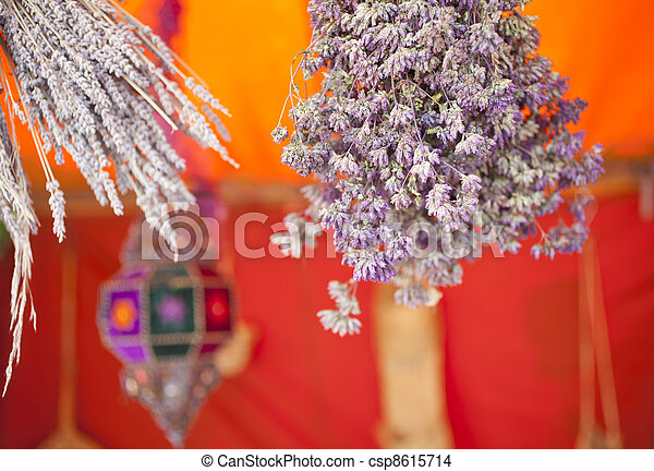 Dried herbs - csp8615714