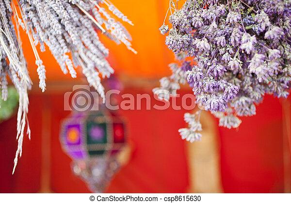 Dried herbs - csp8615630