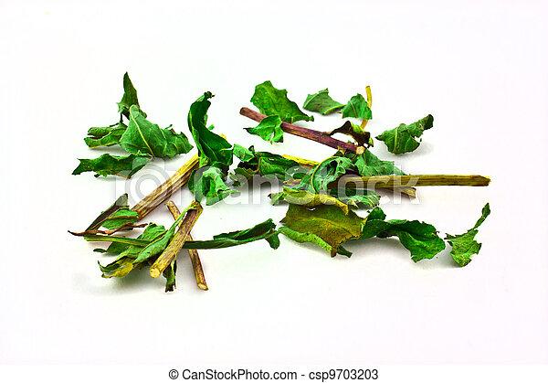 Dried herbs - csp9703203