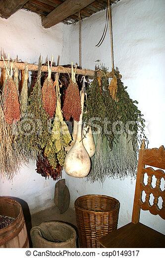 Drying Herbs - csp0149317