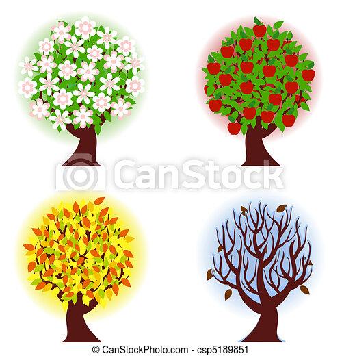 four seasons of apple tree. - csp5189851