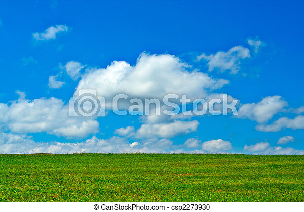 Green field, blue sky and white clouds - csp2273930