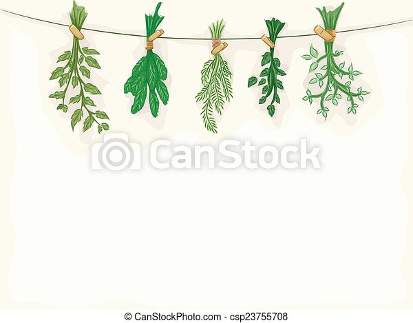 Herbs Background - csp23755708