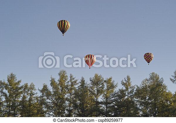 Hot Air Balloons - csp89259977