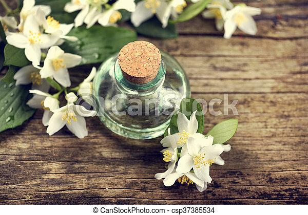 Jasmine Oil - csp37385534
