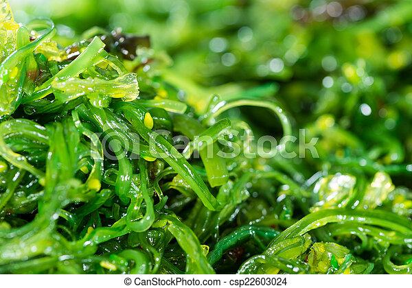 Kelp Salad background image - csp22603024