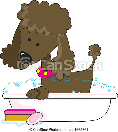 Poodle Bath Brown - csp1668761