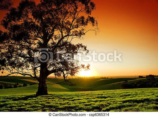 Rural Sunset - csp6365314