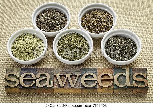 seaweeds - diet supplements - csp17615403