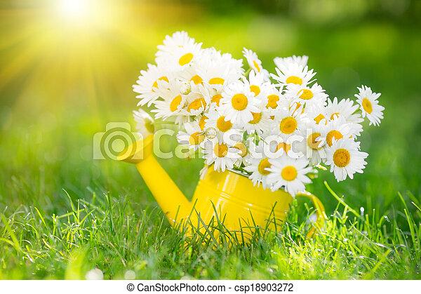 Spring flowers - csp18903272