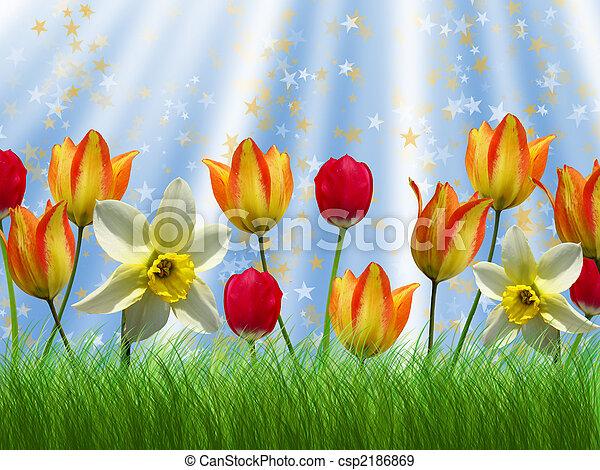 Spring - csp2186869
