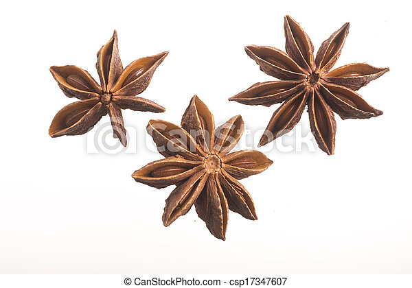 Star anise as fragrance and decoration - csp17347607