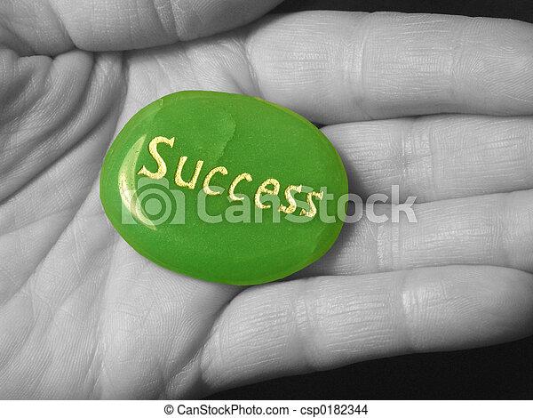 Success - csp0182344