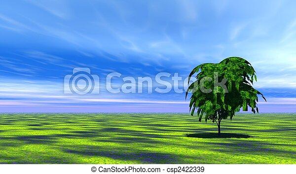 Tree in green grass - csp2422339