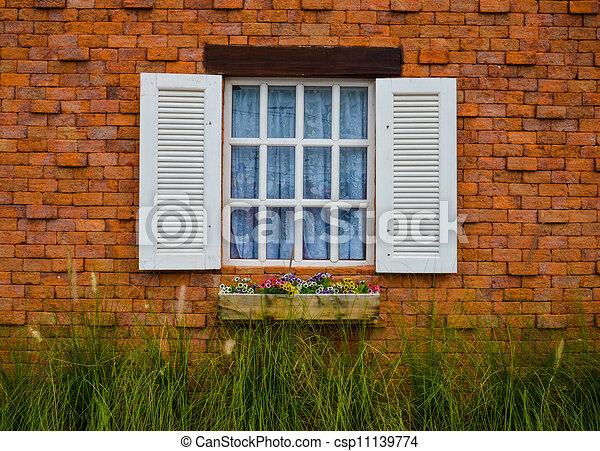 window - csp11139774