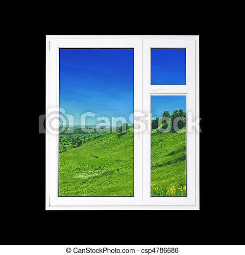 Window - csp4786686