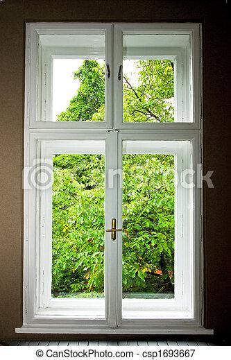 Window Window - csp1693667