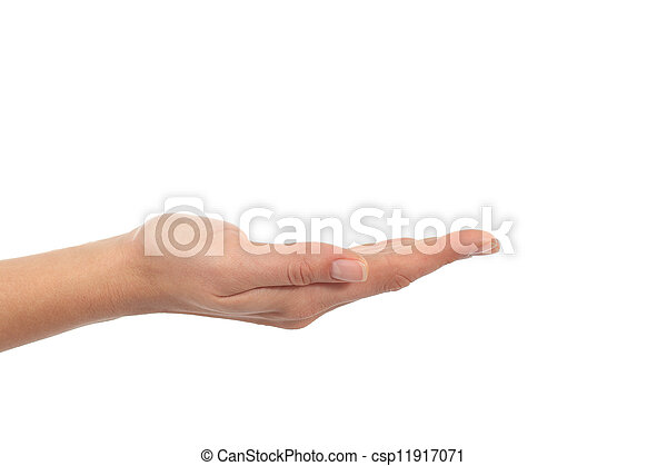 Woman hand with palm up - csp11917071